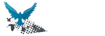 truemedia-wordmark-inv